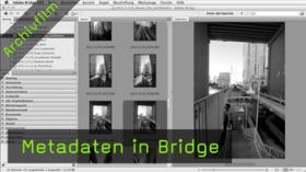 Metadaten in Bridge