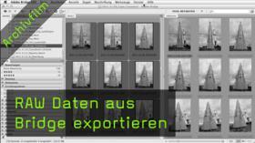 RAW Daten aus Bridge exportieren