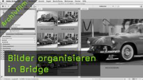 Bilder organisieren in Bridge