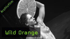 Fotoevents, Wild Orange, Kay Huett, Model Sharings, Workshops, Fotografentreff