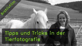 ruth-marcus-tierfotografie-naturfotografie