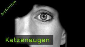 katzenaugen portraitfotografie