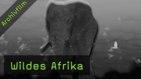 naturfotografie-wildes-afrika-fotoreise