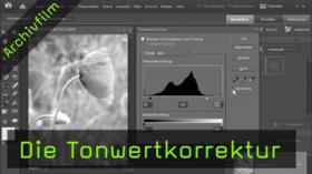Die Tonwertkorrektur in Photoshop Elements