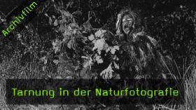 Tarnung in der Naturfotografie