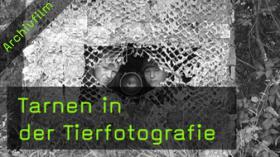 Tarnen, Ansitzfotografie, Tarnzelt, Tarnanzug, Tierfotografie