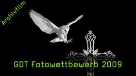 GDT, GDT-Preis, Naturfotografie