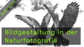 Naturfotografie Gerhard Zimmert Bildgestaltung