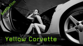 Martin Krolop Workshop Tutorial Yellow Corvette
