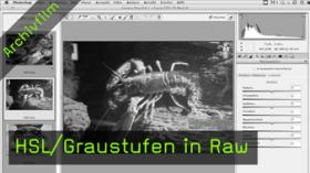 HSL, Graustufen, Raw