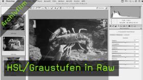 HSL, Graustufen, Raw