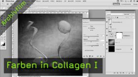 Farben in Collagen anpassen